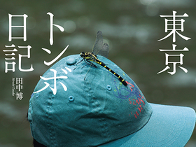 TOMBO_COVER_f2.jpg