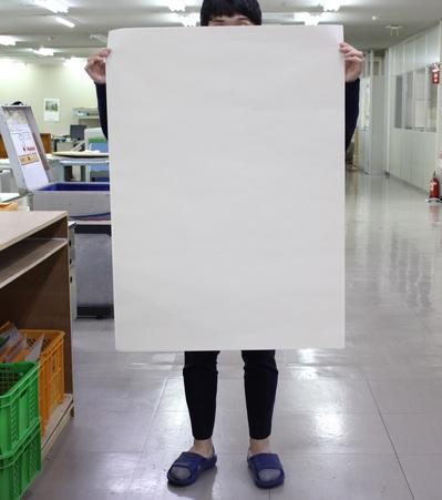 ★でっかい紙.jpg